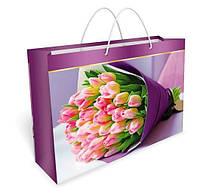 Бумажный подарочный пакет Большой горизонтальный 24.2*35.9*10.4см №32,025 СП