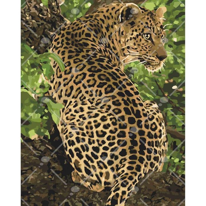 "Набір для розпису по номерах. Тварини, птахи ""Леопард"" 40*50см, Сложность 4"