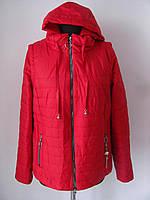 Куртка-трансформер демисезонная короткая больших размеров (р-р.58) Код 4636М