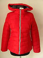 Куртка с капюшоном на молнии (р-р M,L,XL,2XL,3XL), код 4601М