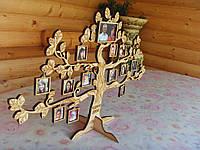 Cемейное дерево, родинне дерево