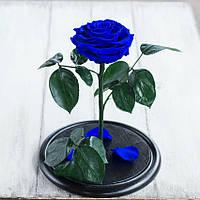 Стабилизированная роза в колбе Lerosh - Lux 33 см, раскрытая Синяя - 138945