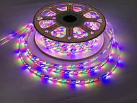 Светодиодная лента RGBWYP (6 цветов) SL-16 Premium SMD 2835/180 220V 4Pin IP65 (1м) Код.59507