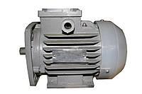 Двигатель АИР100L2, фото 1