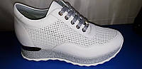 Женские кроссовки из натуральной кожи Alpino, фото 1