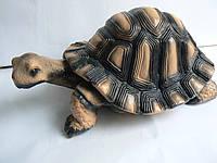 Фигурка для сада Черепаха большая 20 см.