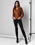 Braggart Youth   Куртка женская весна-осень 25623 коричневая, фото 3