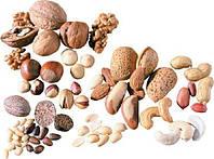 Орехи, каштаны и желуди