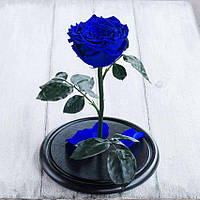 Стабилизированная роза в колбе Lerosh - Lux 33 см, Синяя - 138949