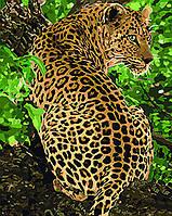 "Картина по номерам. Животные, птицы ""Леопард"" 40*50см KHO4101 Картина по номерам. Животные, птицы ""Леопард"" 40*50см KHO4101"