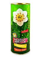 Набор для творчества цветок 2701- НАРЦИС