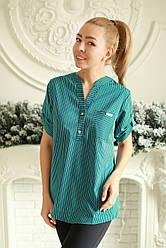 Блузка женская стильная в полоску
