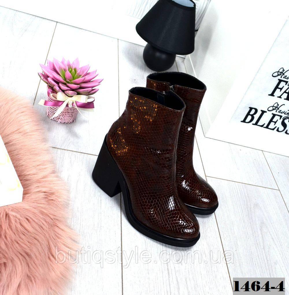 40 размер Демисезонне коричневые ботинки натуральная кожа под рептилию, Украина
