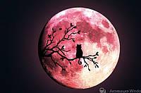 Люминесцентная наклейка - Светящаяся луна (30х30см)