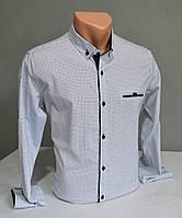 Мужская рубашка G-port в клетку