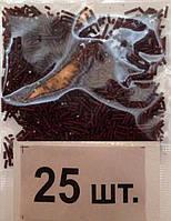 """Посыпка Пасхальная Палочка 5г """"Шоколадная"""" ГудМикс уп25 ящ400"""