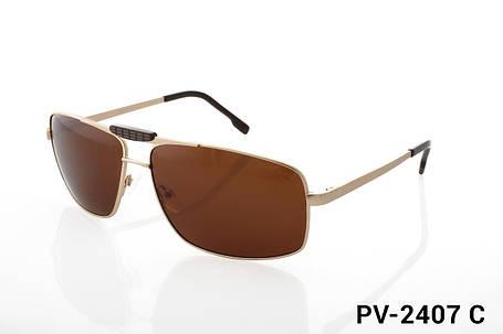 Чоловічі сонцезахисні окуляри ProVision модель PV-2407C, фото 2