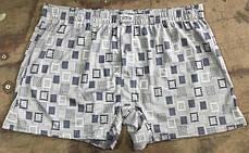 Мужские шорты (семейные трусы пол батал 3,4) Марка «CASTOM» арт.28302, фото 2
