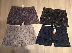 Мужские шорты (семейные трусы пол батал 3,4) Марка «CASTOM» арт.28302, фото 3