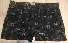Чоловічі шорти (сімейні труси підлогу батал 3,4) Марка «CASTOM» арт.38101