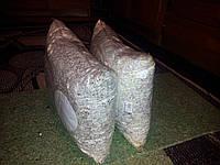 Зерновой мицелий императорского шиитаке