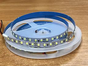 Светодиодная лента SMD 2835/120 12V белая холодная IP20 Код.59515