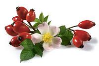 Шиповник плоды сушеные фасовка 1 кг.