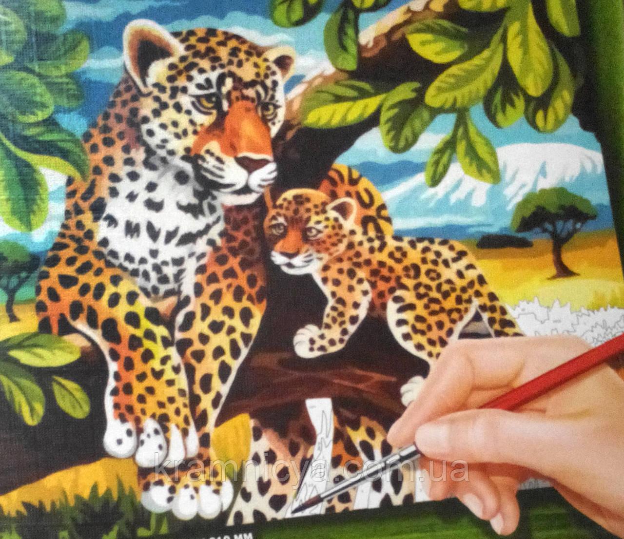 """Раскраска по номерам средняя """"Леопарды"""" (29,7 х 21,0 см.)"""
