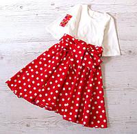 Детское платье р.146 Беатрис горох, фото 1