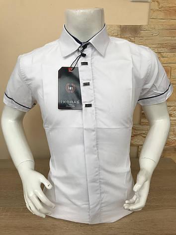Детская белая рубашка с коротким рукавом, 2-7лет, фото 2