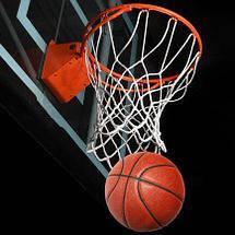 Сітки для баскетбольних кілець