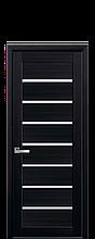 Дверное полотно Леона Венге DeWild со стеклом сатин