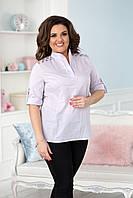 Блуза женская в расцветках 35595, фото 1