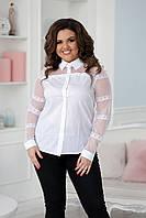 Блуза с кружевом на рукавах  в расцветках 35597, фото 1