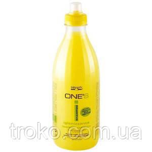 DIKSON AREA ONES Shampoo Purifying - Шампунь Имбирь-бузина против перхоти, для жирных волос 1000 мл