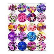 Капкейки-5 см Квіти-2 вафельна картинка
