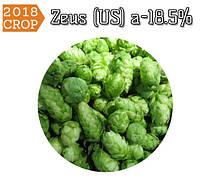Новое поступление: Хмель Zeus (US) 2018г