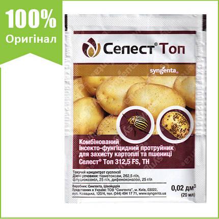 """Протравитель картофеля и озимой пшеницы """"Селест Топ"""" 20 мл от Syngenta, Швейцария (оригинал), фото 2"""