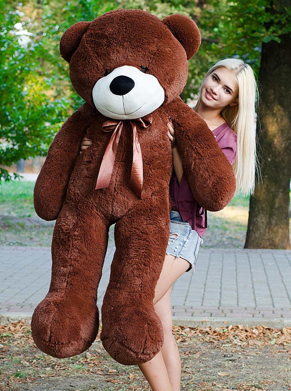 несмотря фотоподделки большой медведь химия полностью