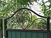 Ворота, калитки из профнстила, фото 4