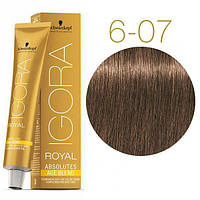 Schwarzkopf крем-краска для волос IGORA ROYAL Absolutes 100% Закрашивания седых волос 6-07 темно-русый натуральный медный