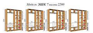 Шкаф-купе 2,1*0,45*2,2 (эшк-7212)