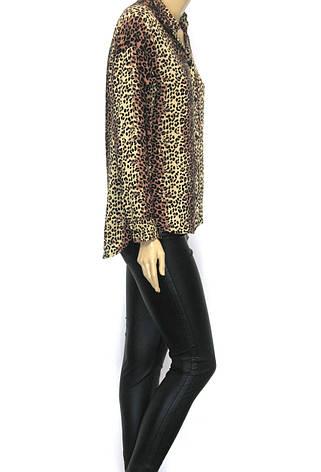 Жіноча блузка сорочка з леопардовим принтом, фото 2