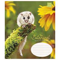"Тетрадь 12 листов линия Школярик ""Forest animals"" (30) (300) №012-2643 L, фото 1"