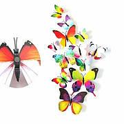 Бабочки и Цветы 3D декоративные