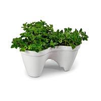 Вазон для цветов Ivy Planter Keter, фото 1