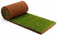 Рулонный газон – идеально ровный