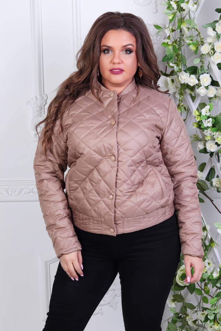 Куртка-БАТАЛ, женская 310,  цвет кофе с молоком