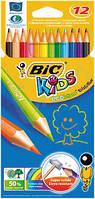 Цветные карандаши Bic еволюшн (12 цветов)