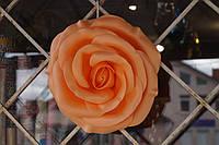 Большие цветы Роза на фотозону диаметром 30 см